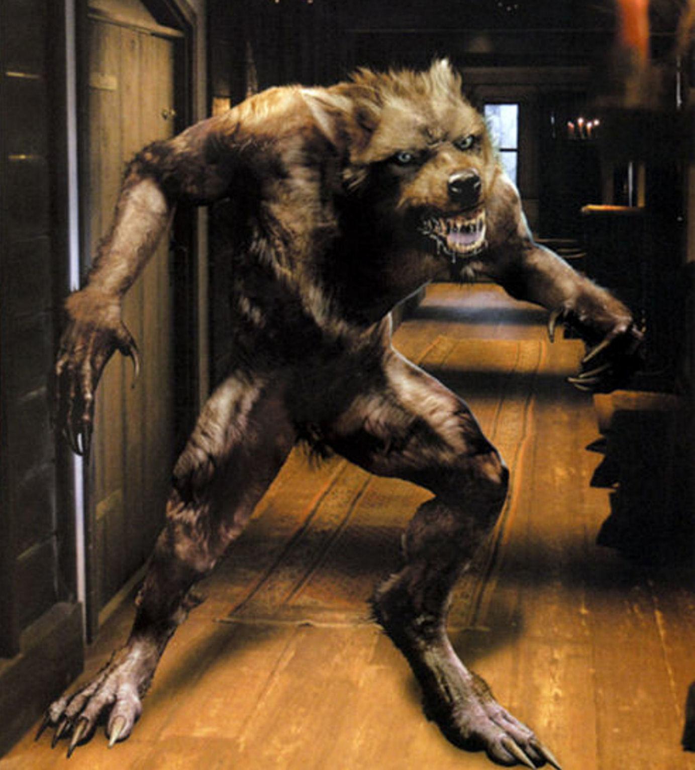 Wearwolf fucks woman nude videos